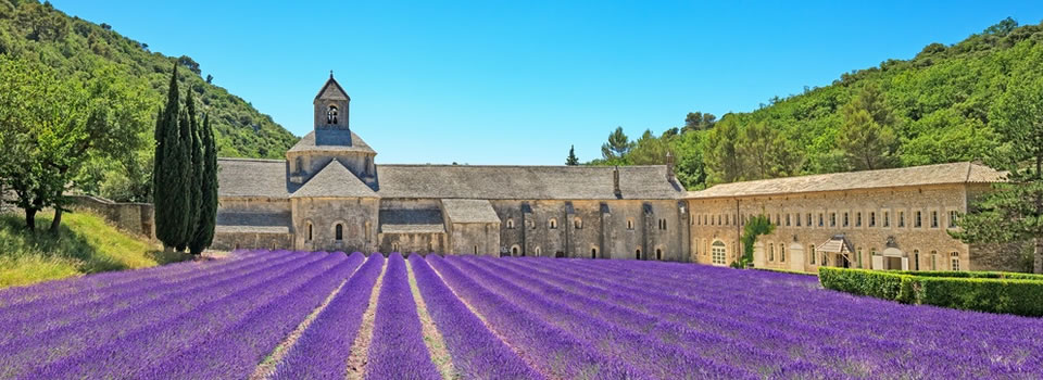 Learn French in France in beautiful Provençe